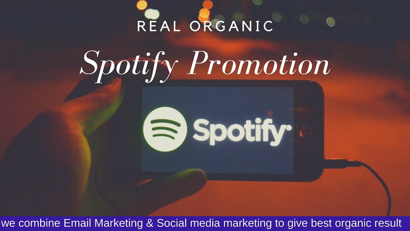 viral organic music promotion of your song