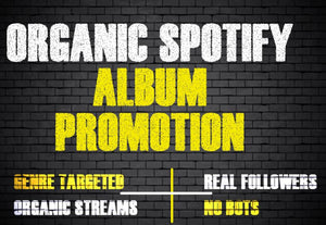 30+ Days Complete Package Multiple Playlist Placement & Promotion to Increase Your Monthly Listeners, Track Popularity and Algorithm Ranking - All Genres Accepted