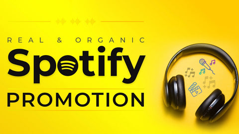 organic music promotion to targeted audience