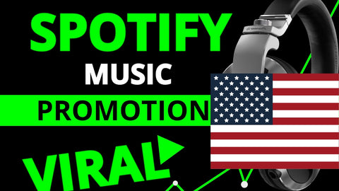 promote your music and make it viral with ads, placements, site embeds and google seo