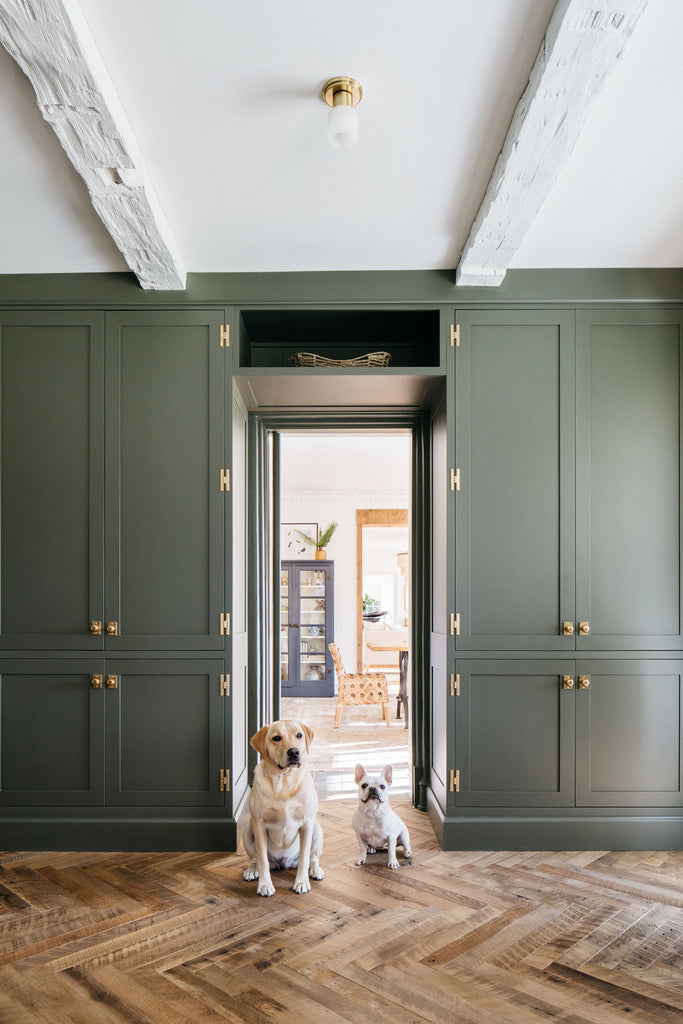 green painted kitchen cabinets with polished brass hardware, dogs in doorway