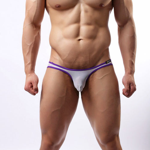 Men's Sexy Mesh Briefs Bikini Underwear