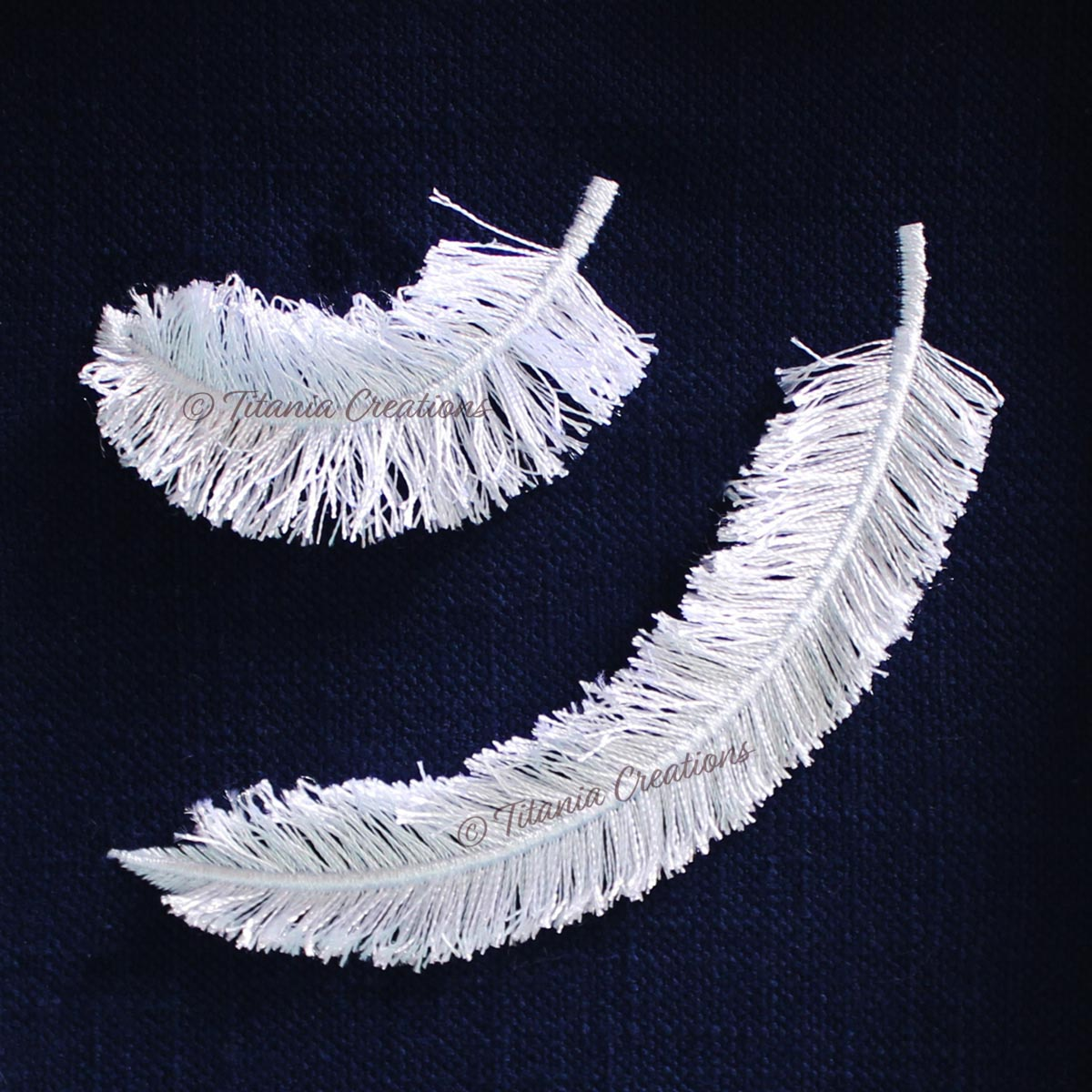 Fringed Feather Set of Two 4x4