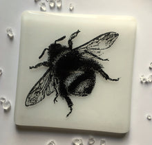 Bee Coaster / Bumblebee / Honey Lover / Gardeners Gift
