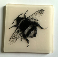 Bumblebee Coaster / Bee Lover / Love of Honey / Bee Coaster / Pale Pastel Pink
