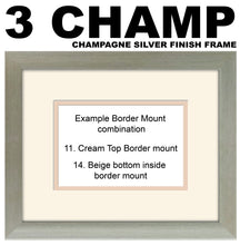 "6""x4"" Double Aperture Photo Frame Ready Made for 2x 6""x4"" portrait photos Double Mounted 998X PT-PTPH mount size 415mm x 185mm , Choices of frames & Borders"