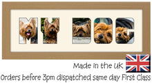My Dog Photo Frame - My Dog CBC 7A 450mm x 151mm mount size  , Choices of frames & Borders