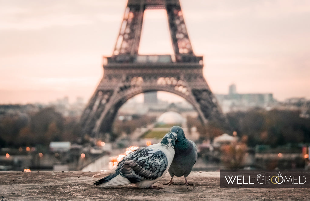 Honeymoon destination Paris