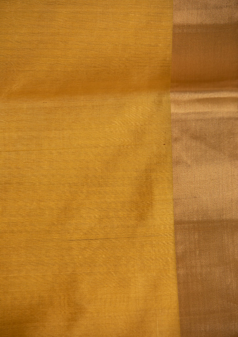 Yellow Chanderi Jaamdani Sari from our collection Lines