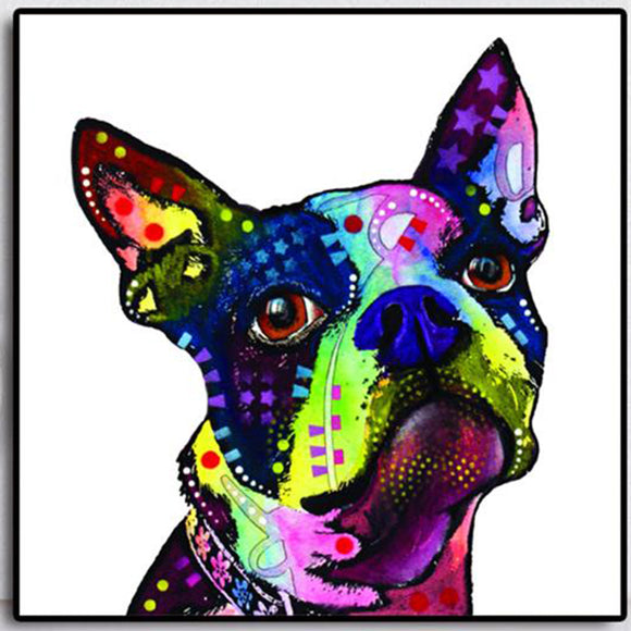 Boston Terrier Canvas Print Home Decor Modern Wall Art Oil Painting