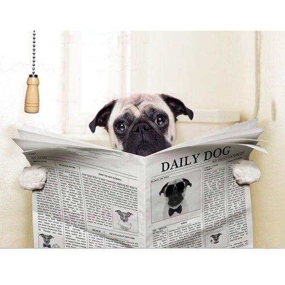 Canvas Print Pug Reading Newspaper