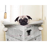 Pug Reading Newspaper Canvas Print