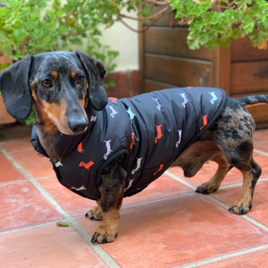 Bodywarmer Jacket For Dogs Dachshund