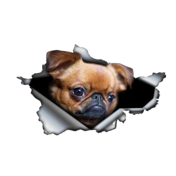 3D Car Sticker Brussels Griffon