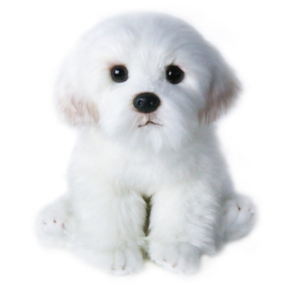 Maltese puppy plush toy