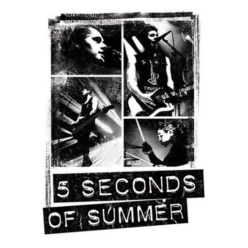 5 Seconds of Summer Photo Blocks Maxi Poster