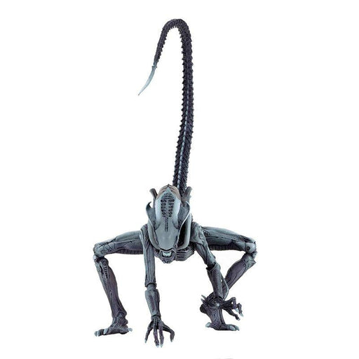 Aliens vs Predator Arachnoid Alien Action Figure - www.entertainmentstore.in