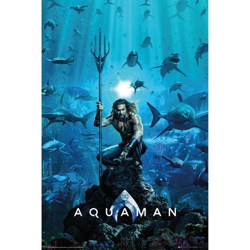 Aquaman One Sheet Maxi Poster - www.entertainmentstore.in