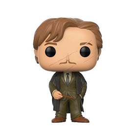 Remus Lupin Harry Potter Pop Figure
