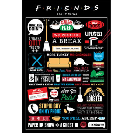 Friends Infographic Maxi Poster