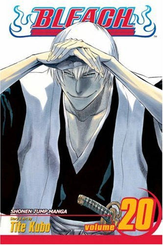 Bleach, Vol. 20 Paperback