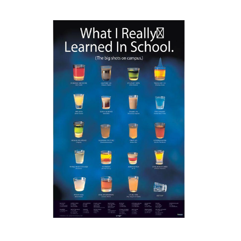 What I Learned In School Framed Poster - www.entertainmentstore.in
