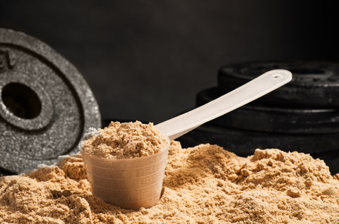 The Everyday Benefits of Whey Protein | Palm Beach Naturals