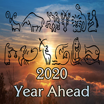 2020 Year Ahead Video Products