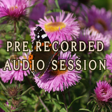 Pre-Recorded Year Ahead Audio Session