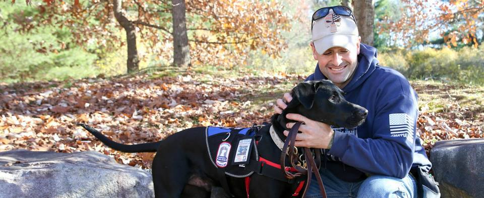 How Operation Delta Dog Uses Service Dogs to Help Veterans