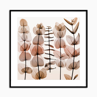 Eucalypti II - Objects of Interest