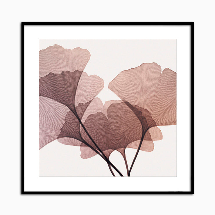 Gingko Leaves I - Objects of Interest
