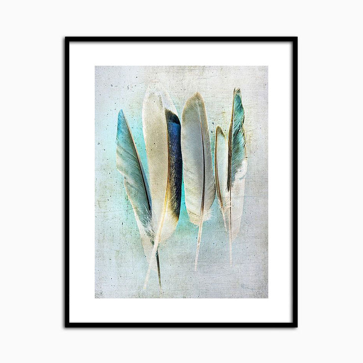 Feathers Turquoise - Objects of Interest