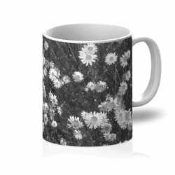 Love and Design Daisy Grey Daisy Gray Mug