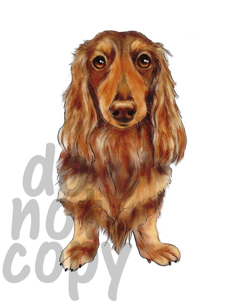 Long Haired Dachshund Watercolor Dog - Dye Sub Heat Transfer Sheet