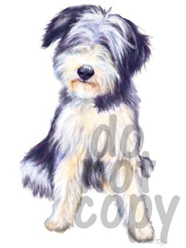 Bearded Collie Watercolor Dog - Dye Sub Heat Transfer Sheet