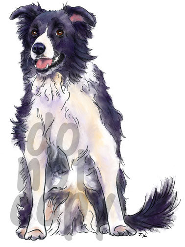 Border Collie Watercolor Dog - Dye Sub Heat Transfer Sheet