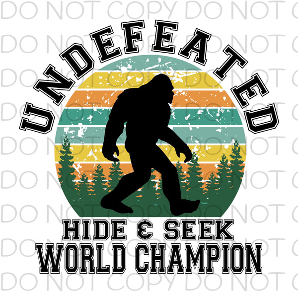 Undefeated hide and seek world champion Bright - Dye Sub Heat Transfer Sheet