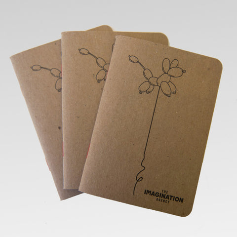 "3 Pack ""Kiko"" Notebooks"