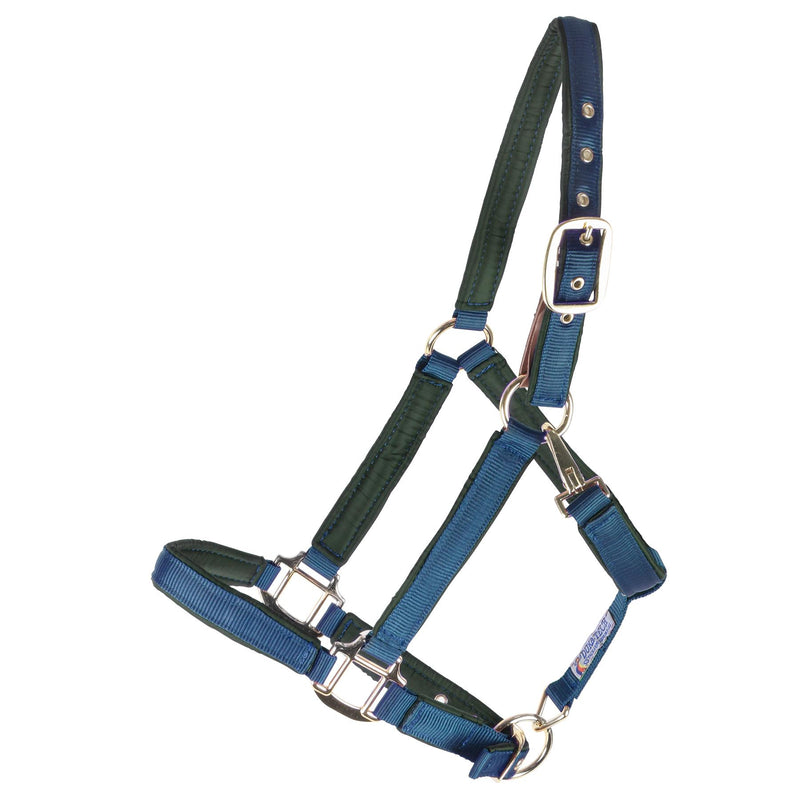 Schneiders Dura-tech® Deluxe Fully Padded Nylon Breakaway Headcollar
