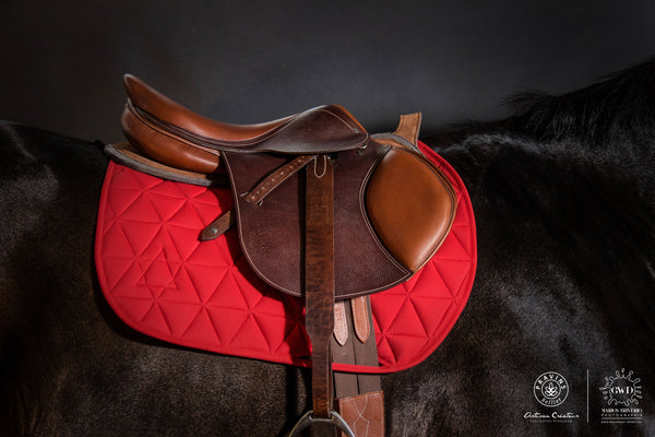 Pravins Sellier Wide Stirrup Leathers
