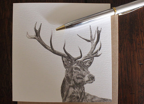 Sophie Botsford Exmoor Stag Drawing Greetings Card