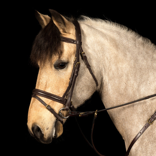 Glaze & Gordon Deluxe Comfort Padded Flash Noseband