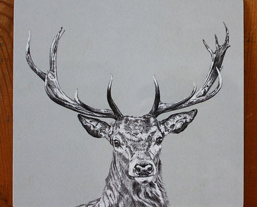 Sophie Botsford Stag Coaster