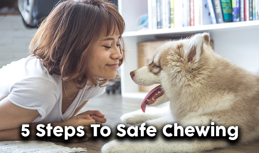 Five Steps to safe chewing