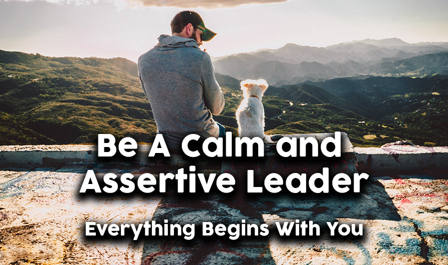 Be a calm and assertive leader