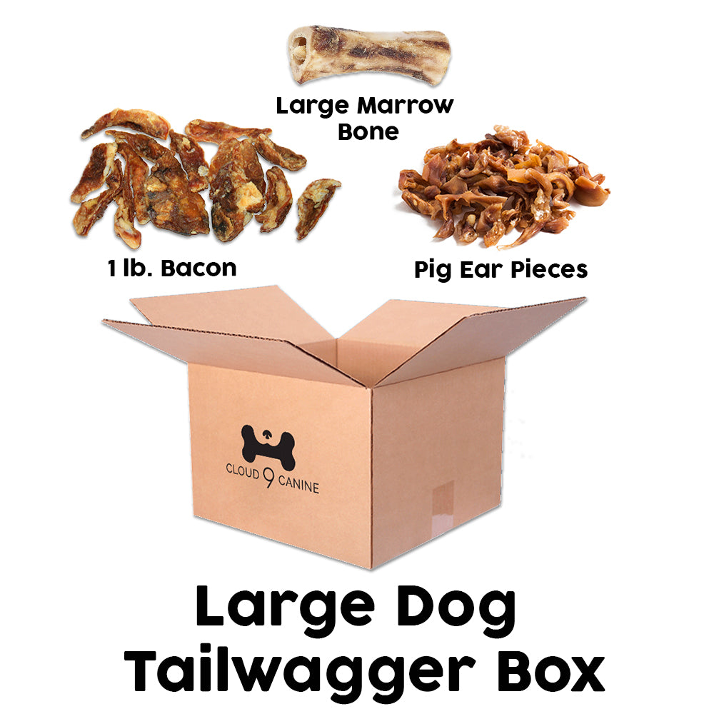 Large Dog Tailwagger Box