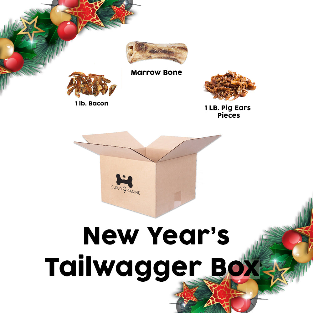 New Years Tailwagger Box