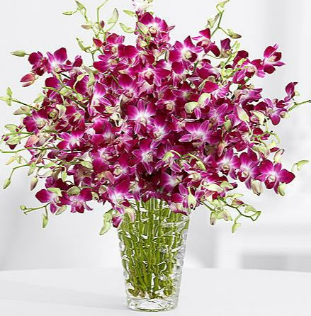 BOUQUET OF DENDROBIUM ORCHIDS