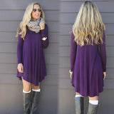Casual Long Sleeve Mini Sweater Dress / Long Top